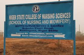 Niger State College of Nursing Past Questions and Answers PDF
