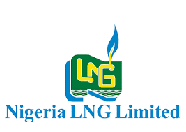 Nigeria LNG Undergraduate Scholarship Past Questions and Answers